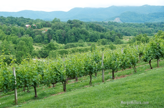 USA North Carolina girlfriend getaways food and wine day trips