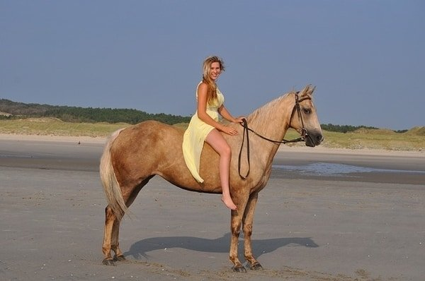 woman horse sand