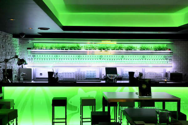 best-cocktail-bars-in-paris-mojito-lab