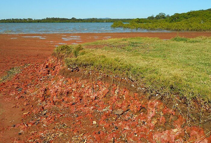 Oyster Point Park, red beach in queensland australia