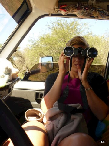 Scanning the horizon with mindfulness - and binoculars, of course! -   guarantees great animal sightings.