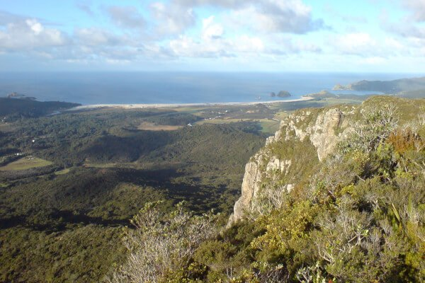 best-things-to-do-in-new-zealand-great-barrier-island