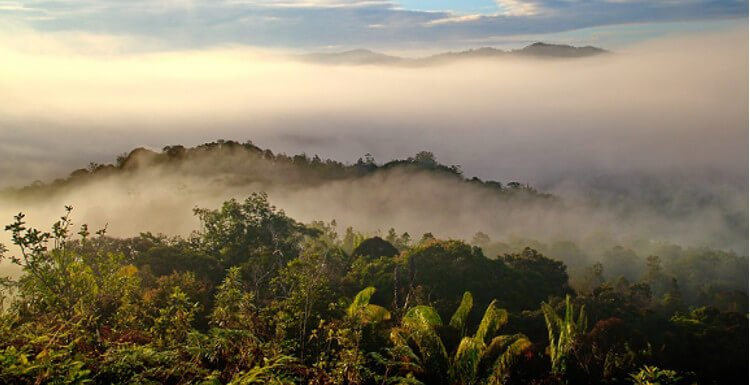 borneo-best-things-to-do