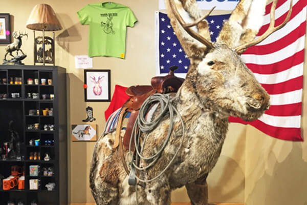 five-quirky-things-us-jackalope