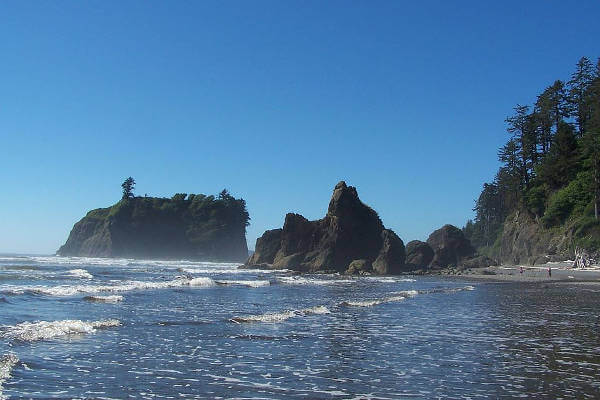 things-to-do-in-olympic-national-park-coastline
