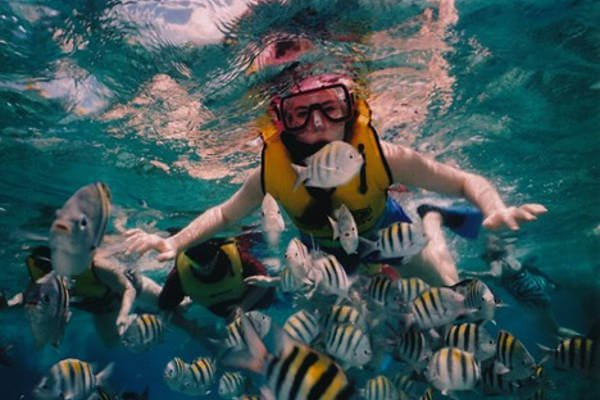 things-to-do-in-maldives-snorkelling