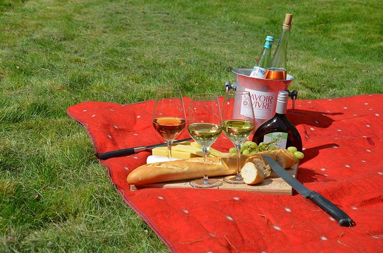 Picnic setup with wine and snacks