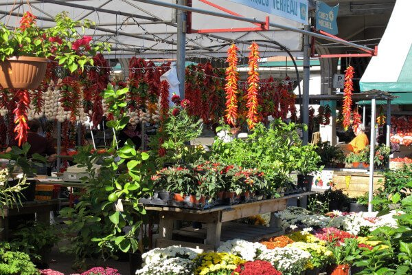 awesome-things-to-do-in-montreal-jean-talon.jpg