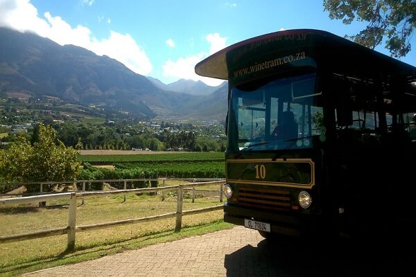 Things to Do in South Africas Cape Winelands 2