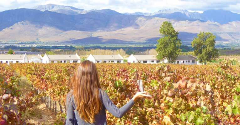 Things-to-Do-in-South-Africas-Cape-Winelands-Main